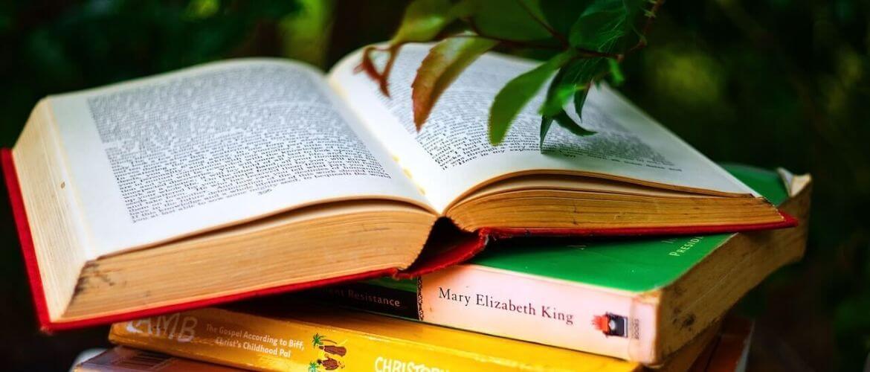 Лучшие книги для блогера