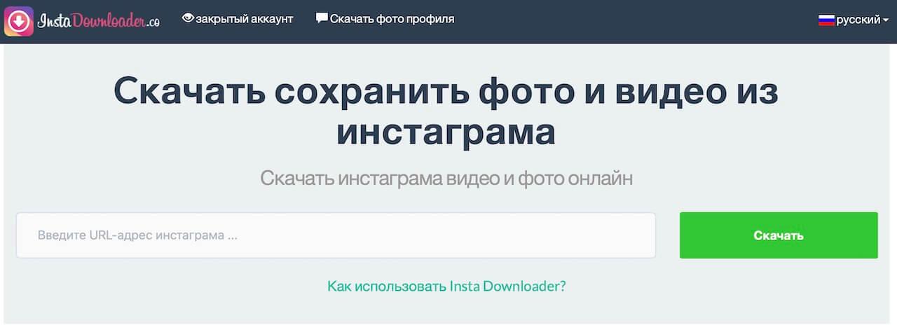 скачать с InstaDownloader