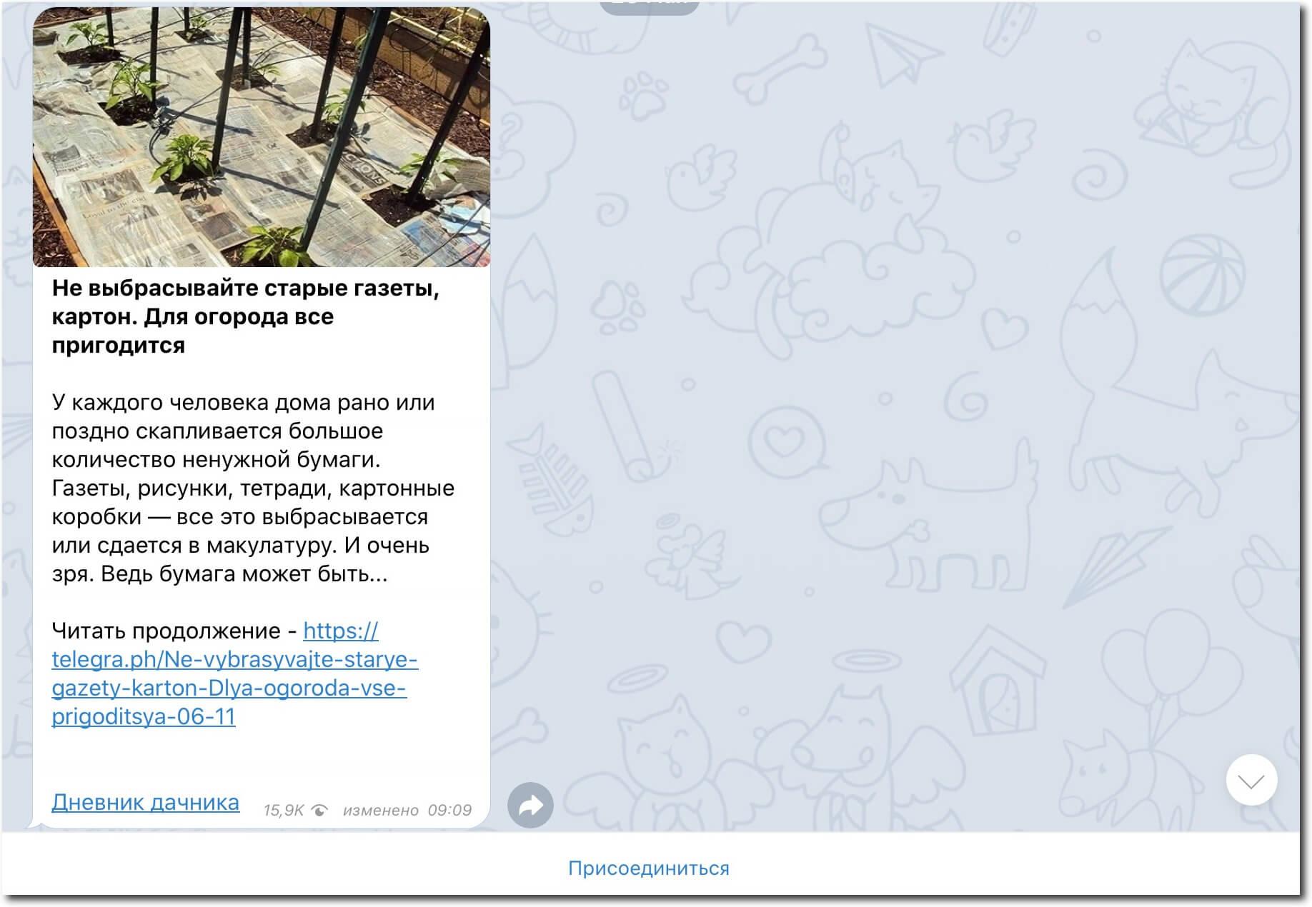 рекламный пост в Телеграм